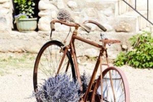Roteiros para amantes de bike: ótimos destinos para pedalar