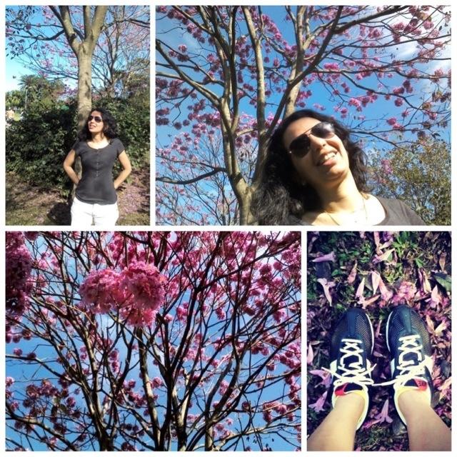 Tempo de Flores no parque ibirapuera