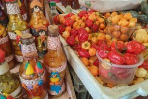 Aracajú – Dez razões para curtir muito