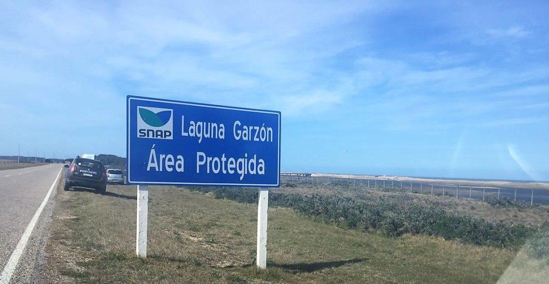 Laguna Garson