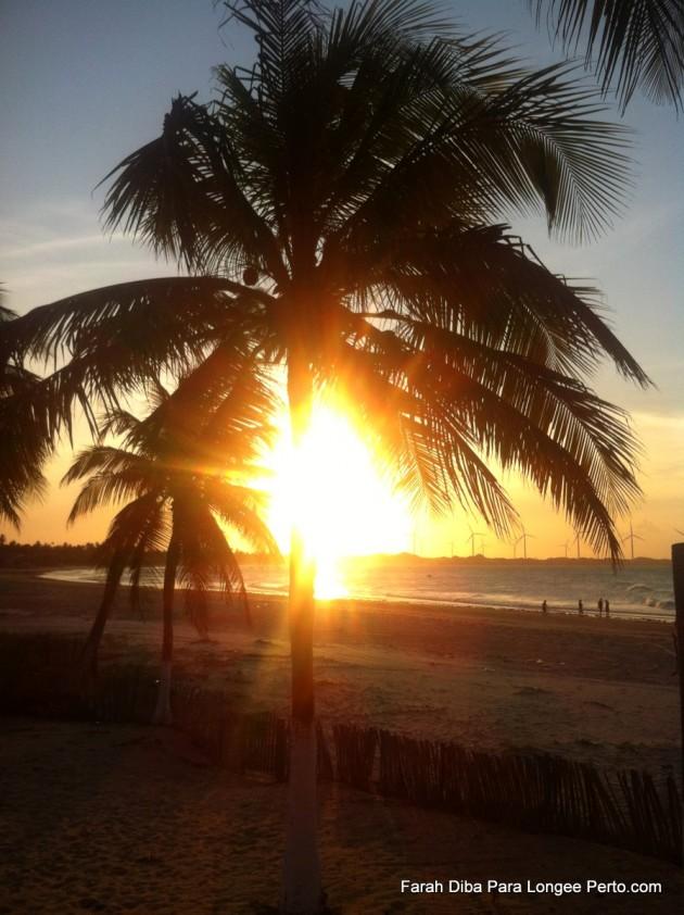 Sol e Coqueiro em Icaraizinho litoral do Ceará
