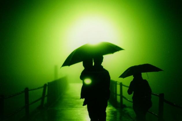 Guarda chuvas no sol verde