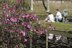 Zen: dez lugares para relaxar em São Paulo